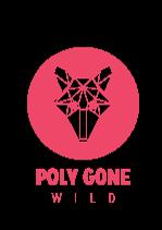 Poly Gone Wild - Startup en IoT image 0