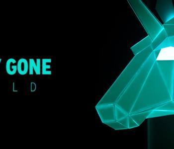 Poly Gone Wild - Startup en IoT image 1