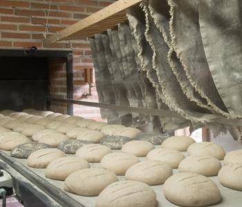 Boulangerie proposant des produits biologiques depuis sa création en 2004 image 1