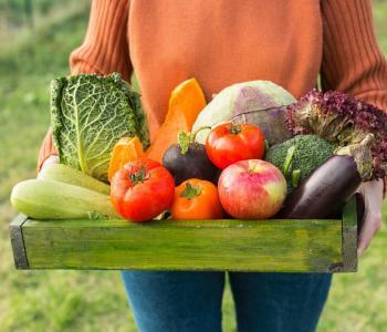 Primeur, fruits et légumes Bordeaux